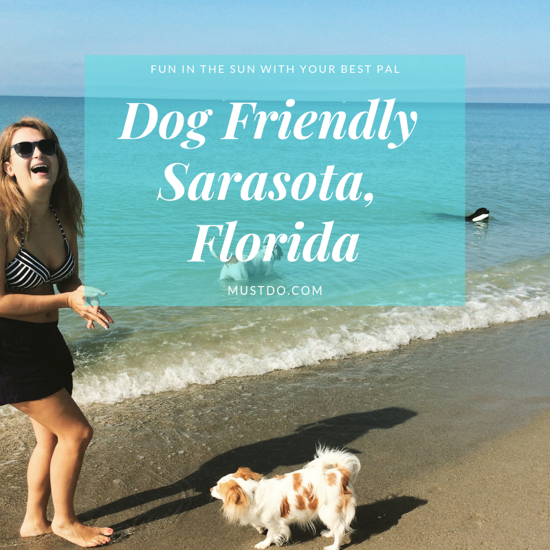 Dog Friendly Places in Sarasota Florida | Must Do Visitor Guides