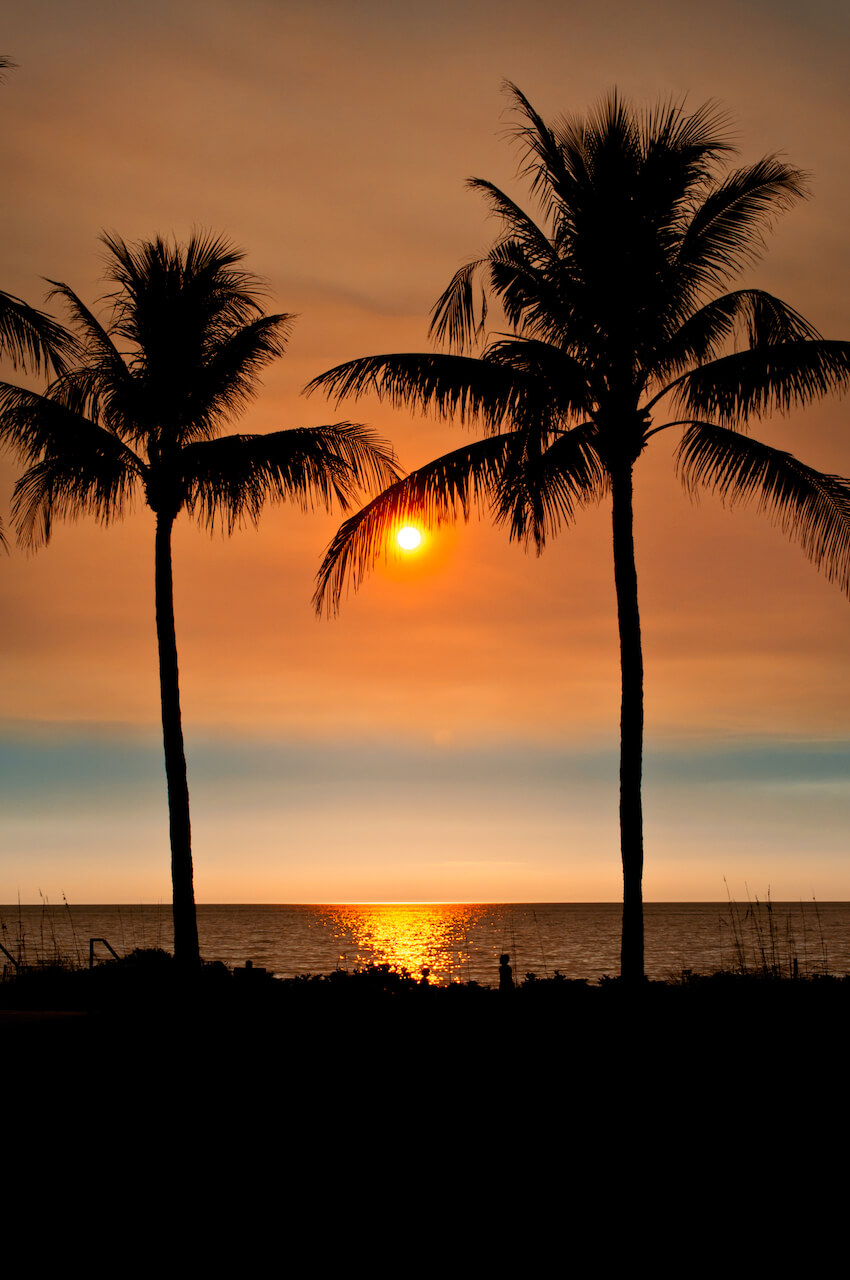 Naples Florida beach sunset with palm trees. Photo by Jennifer Brinkman. Must Do Visitor Guides, MustDo.com