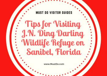 Tips for visiting J.N. Ding Darling Wildlife Refuge on Sanibel, Florida. Must Do Visitor Guides | MustDo.com