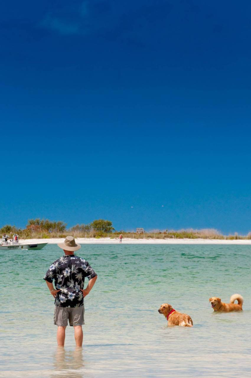 Man with his dogs at pet-friendly Keewaydin Island in Naples, Florida. Photo by Debi Pittman Wilkey. Must Do Visitor Guides | MustDo.com