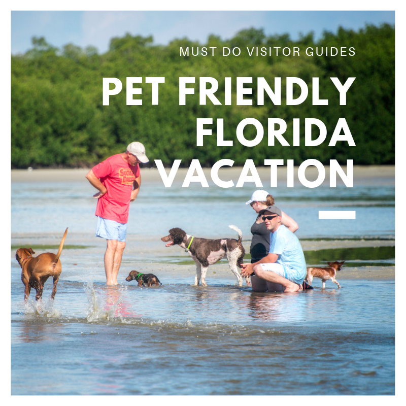 Must Do Visitor Guides Pet Friendly Florida Vacation ideas. Photo by Jennifer Brinkman. | MustDo.com