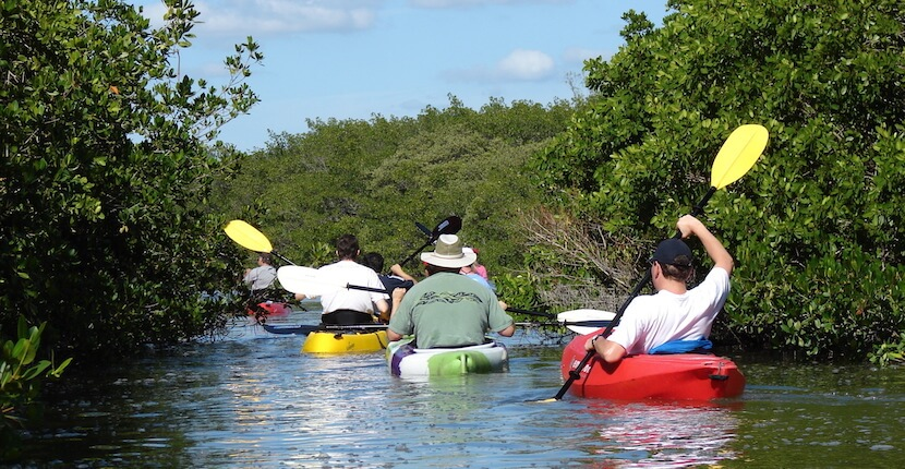 Ride & Paddle Explore Siesta Key waterways with a kayak rental or the exotic mangroves and grass flats of serene Little Sarasota Bay on a family-friendly guided kayak tour.