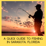 A Quick Guide to Fishing in Sarasota, Florida. Sarasota anglers have a wide variety of fishing opportunities. Get the basics of where to fish, bait, license, types of fish available, fishing guides and charters. | Must Do Visitor Guides