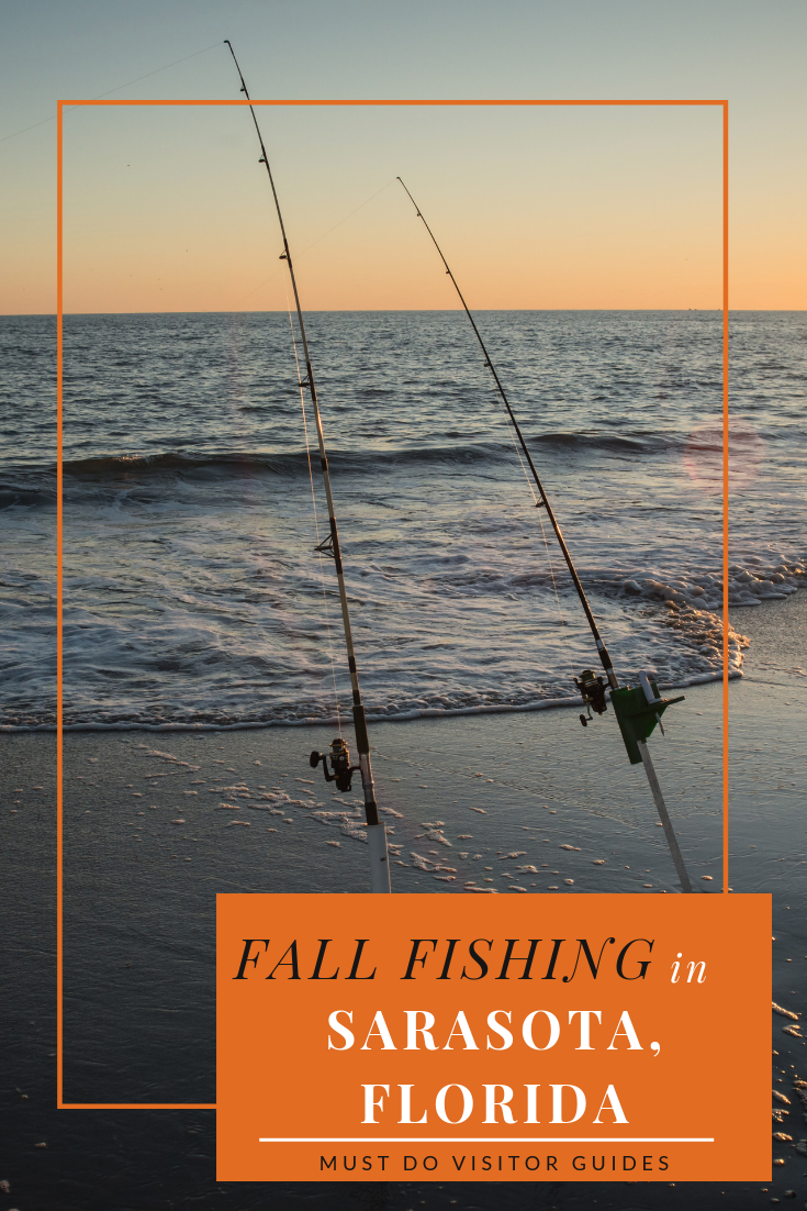Fall Fishing in Sarasota, Florida. Must Do Visitor Guides