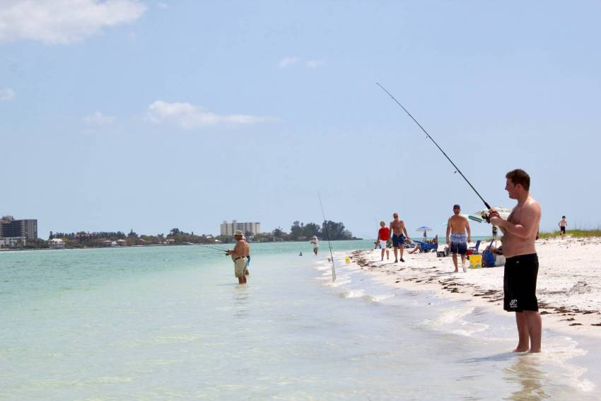 Men fish along the shore at South Lido Park Beach in Sarasota, Florida.  Must Do Visitor Guides | MustDo.com