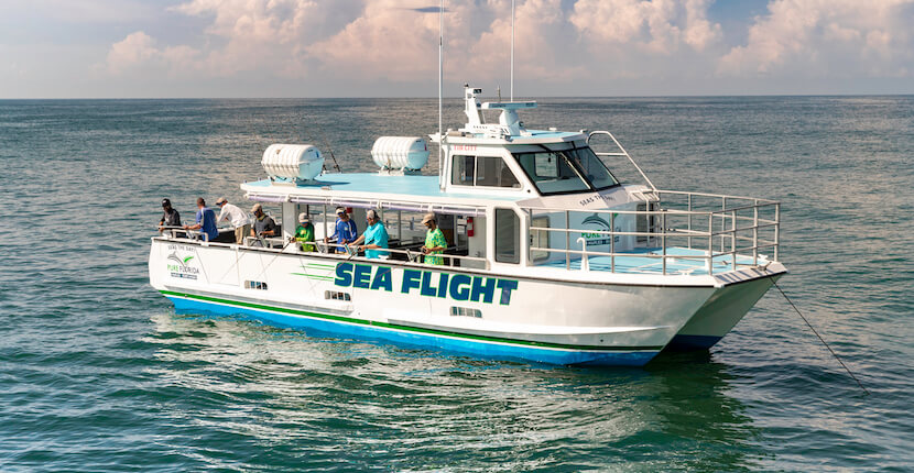 Pure Florida in Naples, Florida offers private and shared offshore deep sea, calm bay, and near coastal fishing charters for beginners to seasoned anglers of all ages.