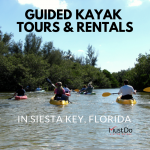 Kayaking through the mangroves on a guided kayak tour in Siesta Key, Florida. Must Do Visitor Guides | MustDo.com