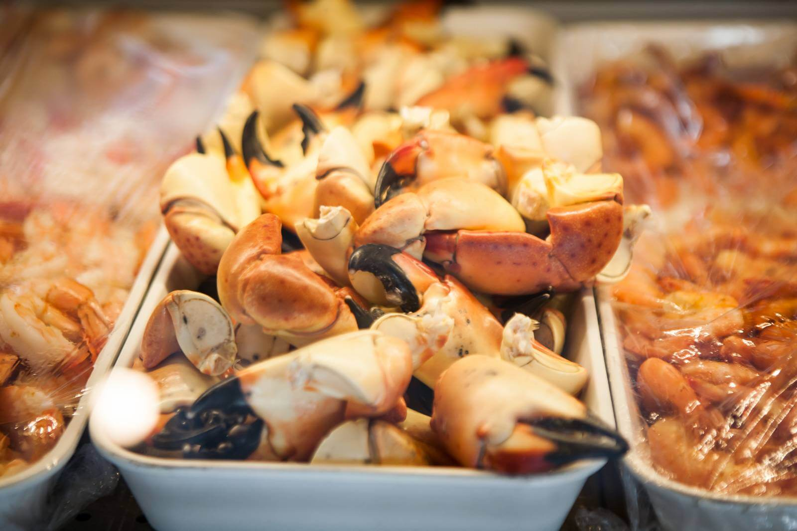 Fresh stone crab claws Sarasota, Fort Myers, Naples, Everglades City Florida.