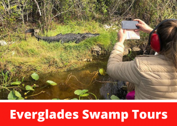 Everglades Swamp Tours. Take a private airboat ride with Everglades Swamp Tours on a Naples or Marco Island, FL day trip to see alligators and birds in the Florida Everglades. Must Do Visitor Guides | MustDo.com