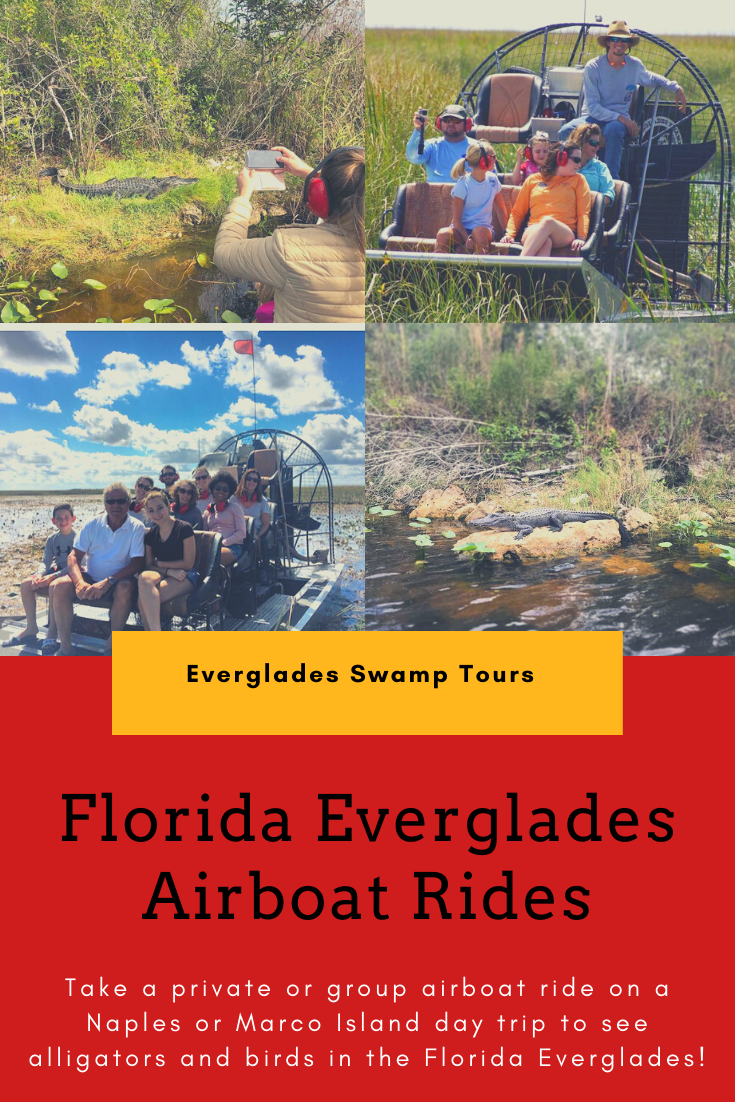 Take a private airboat ride with Everglades Swamp Tours on a Naples or Marco Island, FL day trip to see alligators and birds in the Florida Everglades. Must Do Visitor Guides | MustDo.com