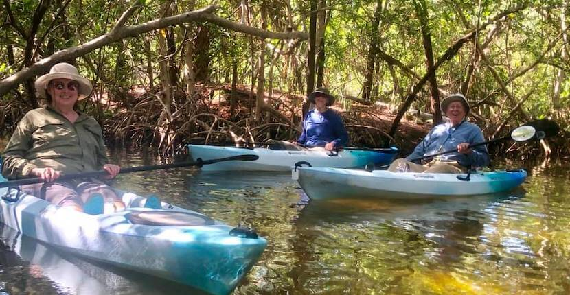 Kayaking SRQ Explore Siesta Key's Jim Neville Preserve or Lido Key's exotic mangrove tunnels on a family-friendly, relaxing, and memorable guided kayak or stand-up paddleboard eco-tour.