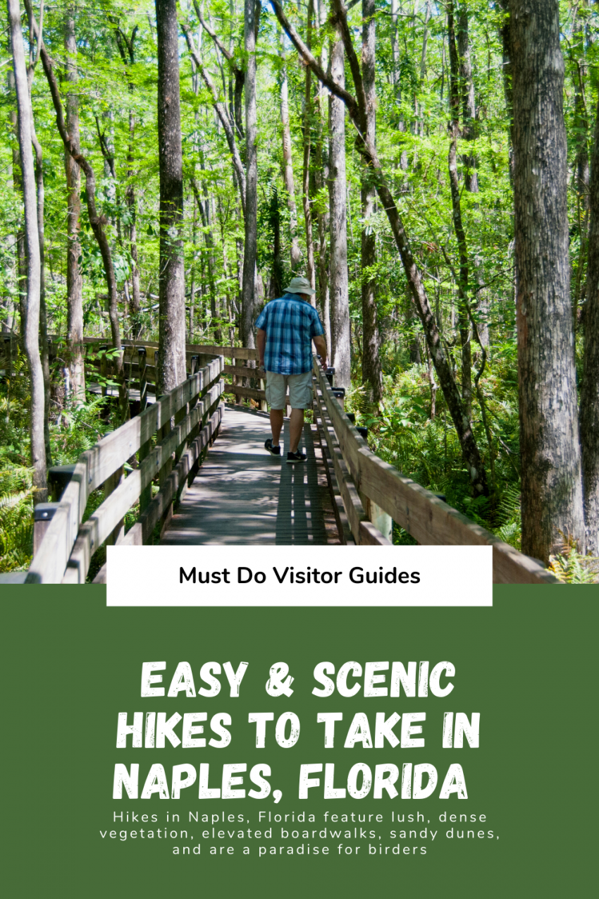 Easy and Scenic Hikes to Take in Naples, Florida. Hikes in Naples, Florida feature lush, dense vegetation, elevated boardwalks, sandy dunes, and are a paradise for birders. Must Do Visitor Guides | MustDo.com