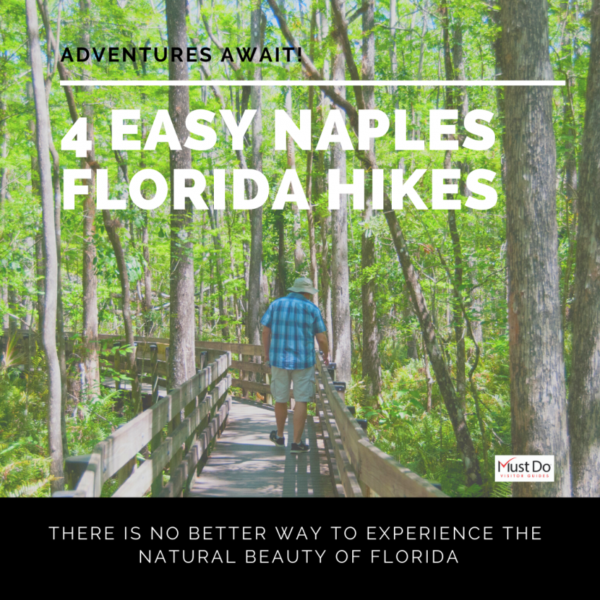 Adventures Await! 4 Easy Naples, Florida Hikes. There is no better way to experience the natural beauty of Florida. Must Do Visitor Guides | MustDo.com