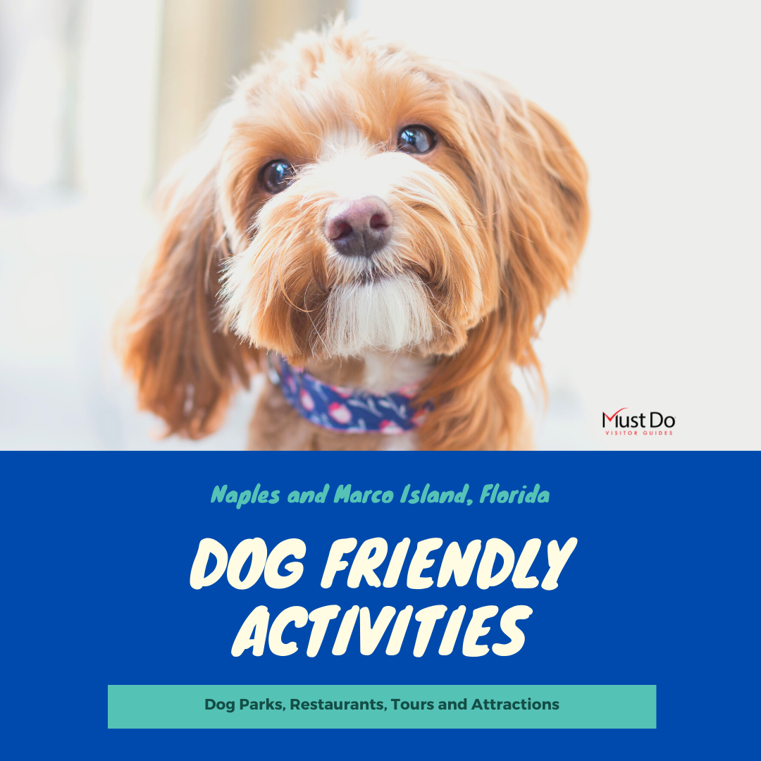 A list of the best dog friendly activities in Naples and Marco Island, Florida. Must Do Visitor Guides | MustDo.com