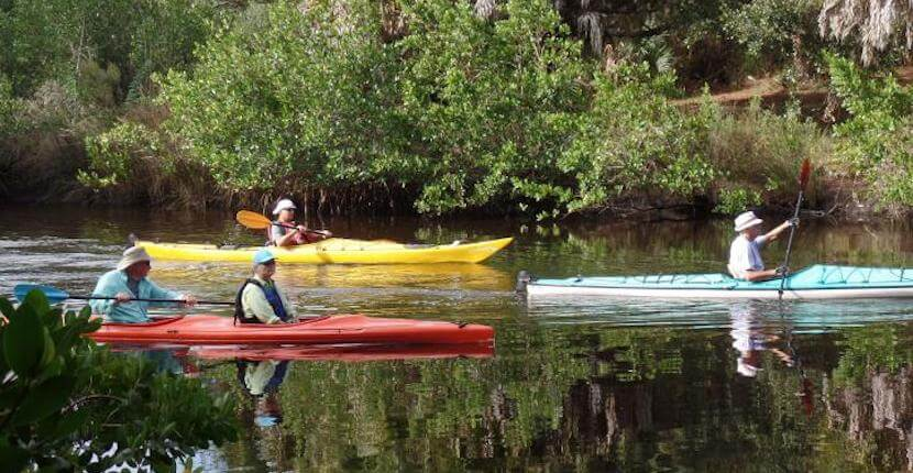 Kayaking at Oscar Scherer State Park in Venice and Sarasota, Florida. Photo credit Florida State Parks.