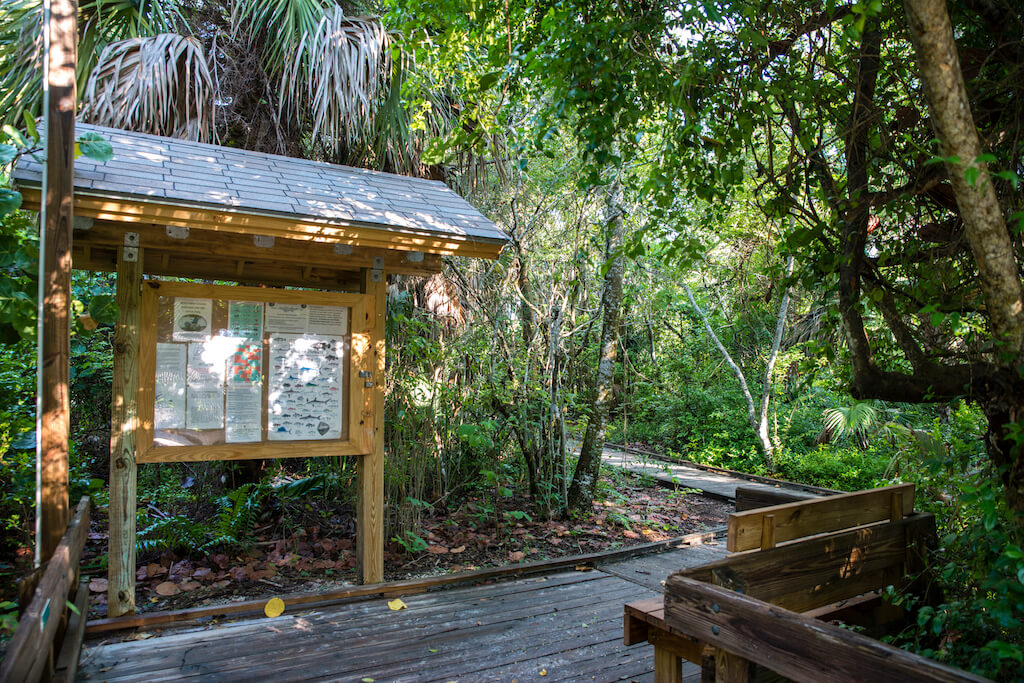 4 Easy Naples, Florida Hikes - Delnor-Wiggins Pass State Park hiking trail Naples, Florida. Photo by Jennifer Brinkman. Must Do Visitor Guides | MustDo.com