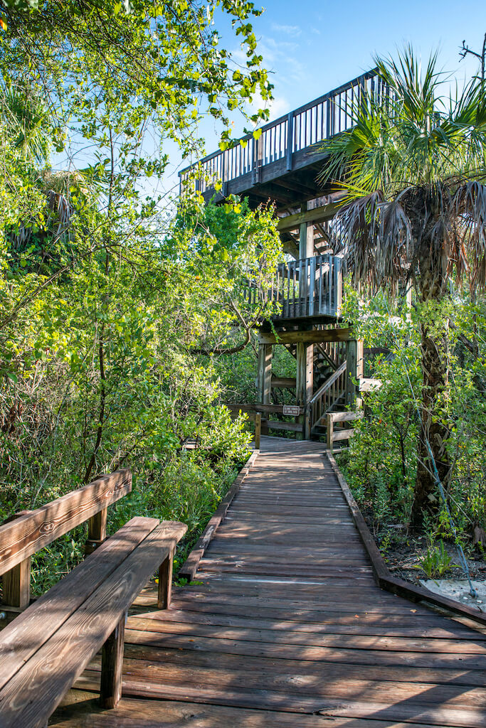 4 Easy Naples, Florida Hikes - Delnor-Wiggins Pass State Park hiking trail to observation tower Naples, Florida. Photo by Jennifer Brinkman. Must Do Visitor Guides | MustDo.com