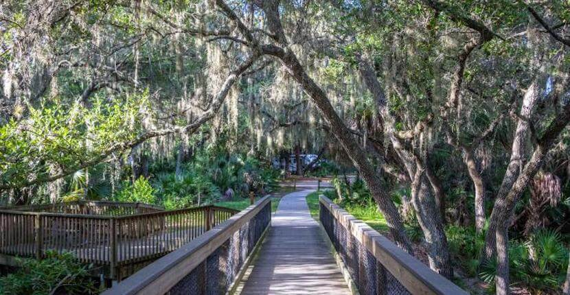 Boardwalk trail at Oscar Scherer State Park in Venice and Sarasota, Florida. Photo credit Florida State Parks.