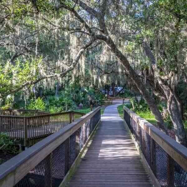 Boardwalk trail at Oscar Scherer State Park in Venice and Sarasota, Florida.