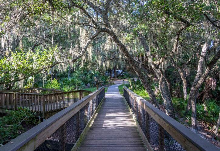 Boardwalk trail at Oscar Scherer State Park in Osprey near Venice and Sarasota, Florida. Photo courtesy Florida State Parks. Must Do Visitor Guides | MustDo.com