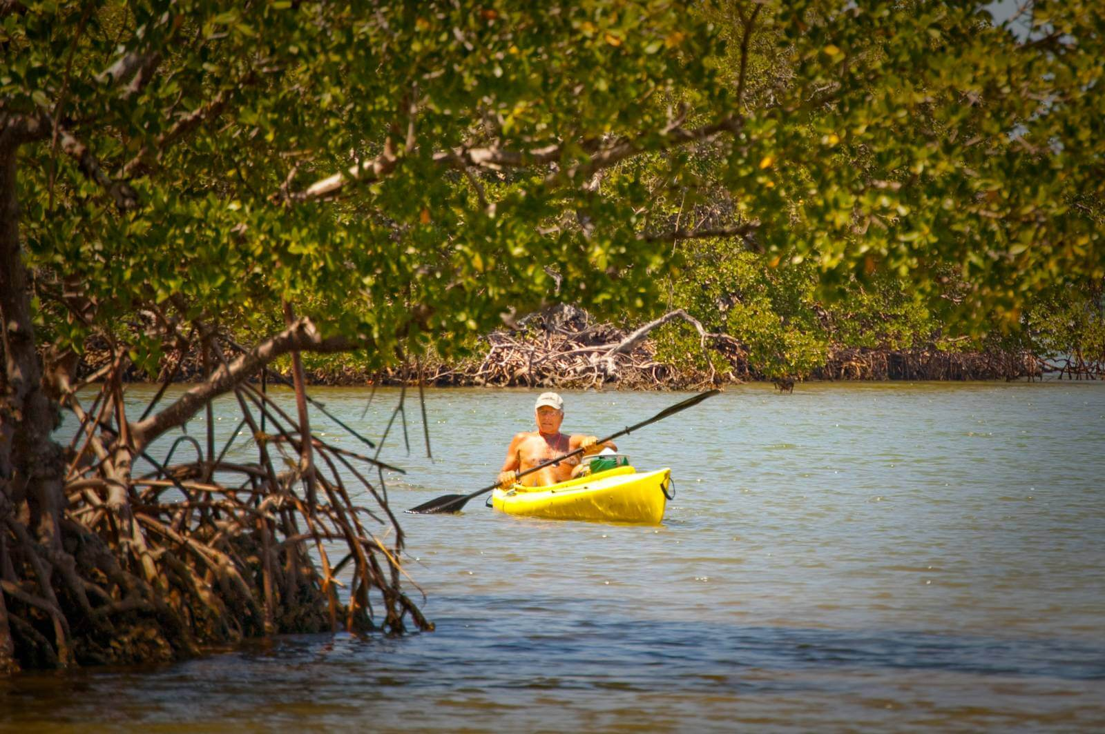 Southwest Florida's Great Calusa Blueway provides paddlers with 190 miles of waymarked kayaking trails through unspoiled waterways teaming with wildlife. Must Do Visitor Guides | MustDo.com