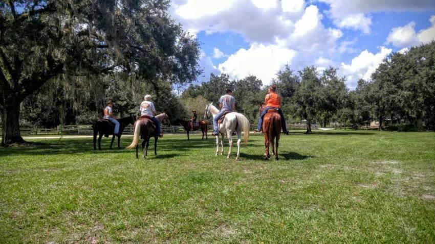 Horseback trail tours Peace River Charters near Sarasota, Florida