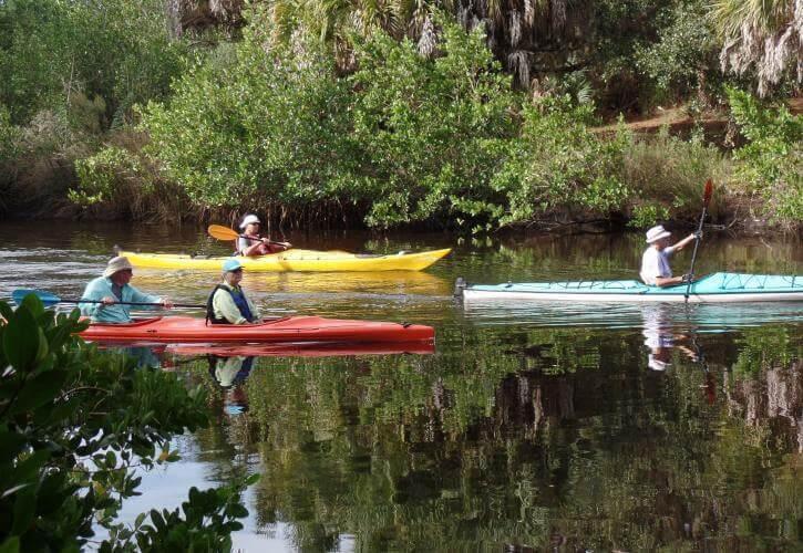 Kayaking at Oscar Scherer State Park  in Sarasota, Florida.
