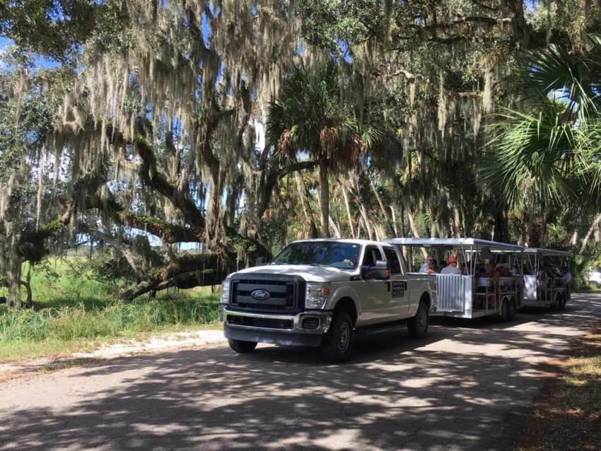 Myakka Outdoors tram tour at Myakka River State Park in Sarasota, Florida. Must Do Visitor Guides | MustDo.com