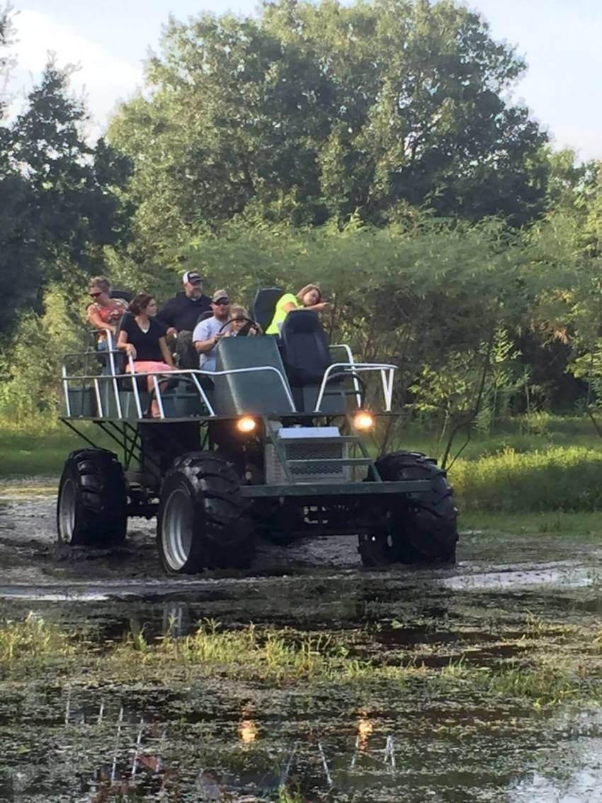 Swamp Buggy Tours Peace River Charters Sarasota, FL