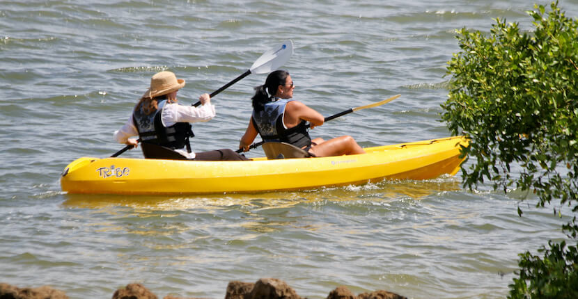 Explore some of Sanibel and Captiva's unique wildlife and natural beauty with a kayak or paddle board rental from Finnimore's.