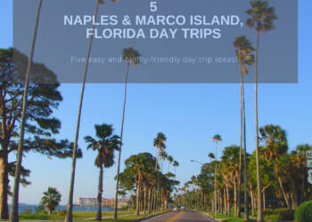 5 easy and family-friendly Naples and Marco Island, FL Day Trip Ideas. Must Do Visitor Guides